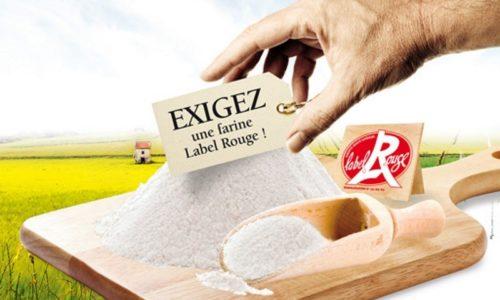 Farine label rouge : Info ou Intox ? On a enquêté pour vous !