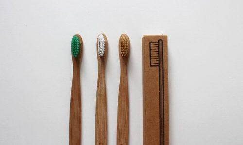Brosse à dent bambou : tout ce que vous devez savoir sur la brosse à dent en bambou